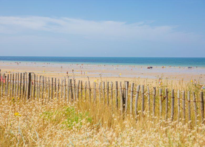 295410-Bord_de_plage-Caen_la_mer_Tourisme___Les_Conteurs_(Droits_reserves_Office_de_Tourisme___des_Congres)